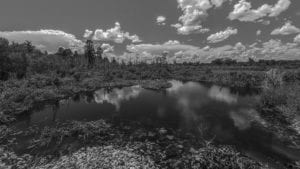 A black and white photograph of circle b reserve (1)