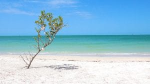 shell key island cinematic 4k nature video cover photo