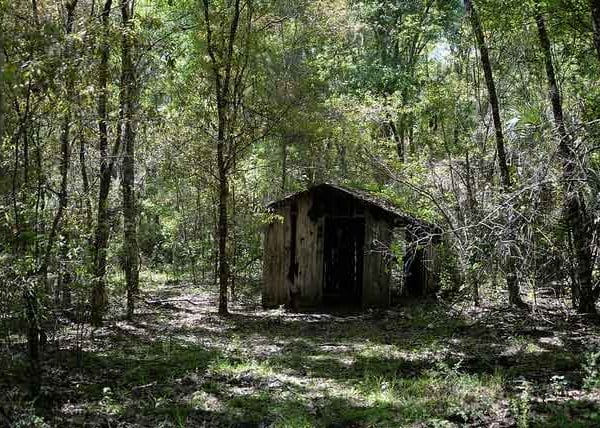 The Stewart Homestead Murders Cabin