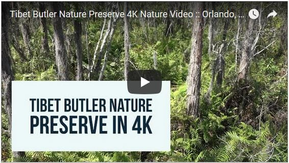 Tibet Butler Nature Preserve Filmed in 4K