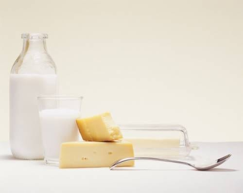 Whey Protein Shows Positive Results For Obesity